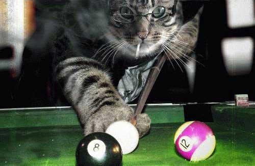 17-billiards-history