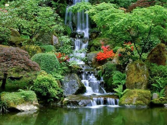 13-garden-design-ideas