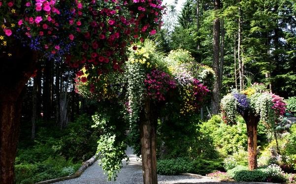 alaska-gardens-3
