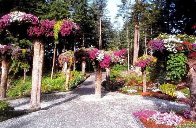 alaska-gardens-4