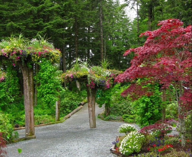 alaska-gardens10