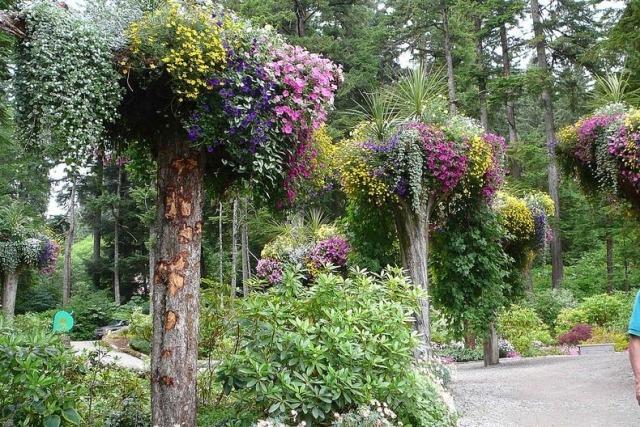 alaska-gardens6