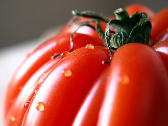 bulls-heart-tomato