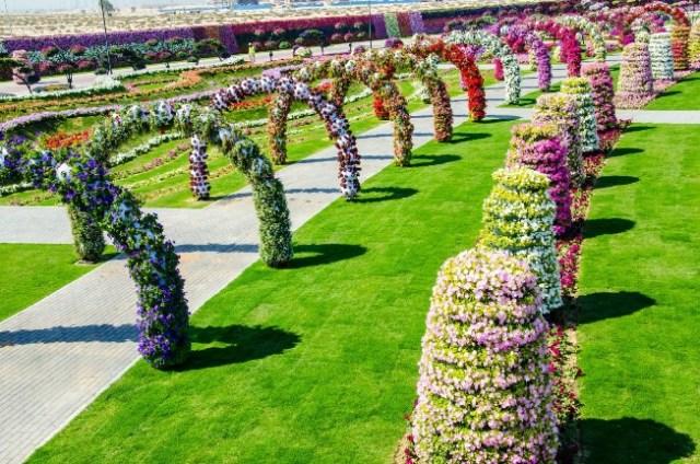 dubai-garden17 - Copy