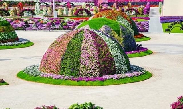 dubai-garden24