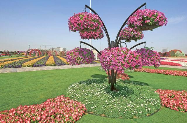 dubai-garden26