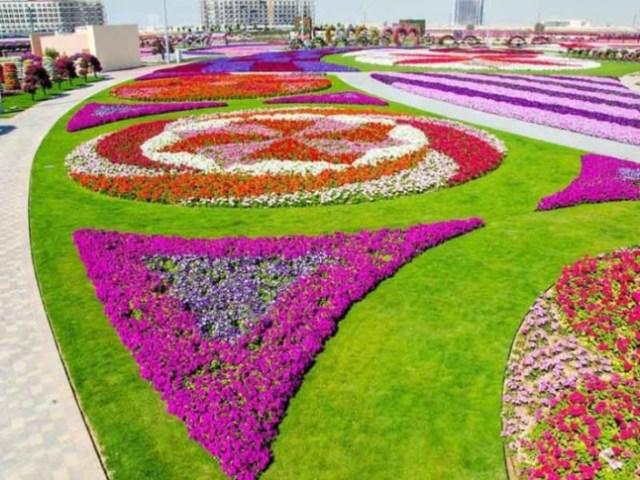 Dubai Miracle Garden2