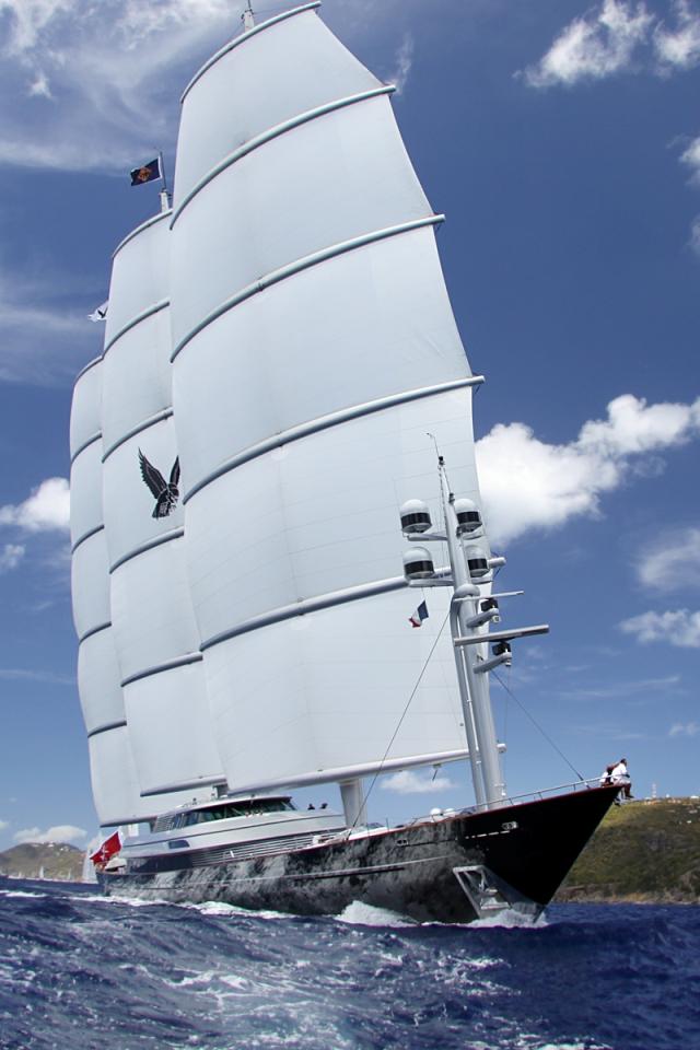 Maltese-Falcon-13