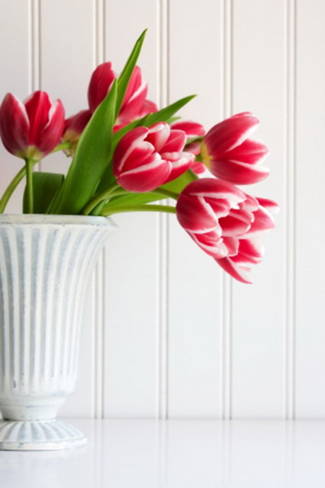 spring-flowers-decoration40