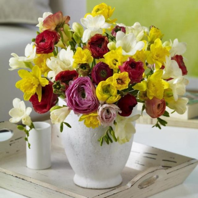 spring-flowers-new-ideas-narcissus10
