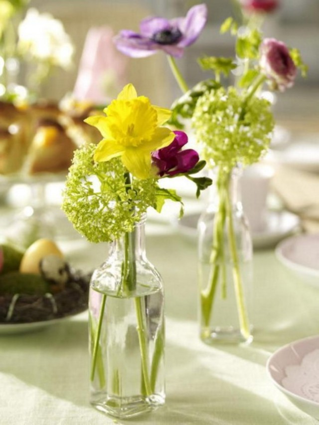 spring-flowers-new-ideas-narcissus8
