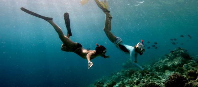 1400x620_underwater