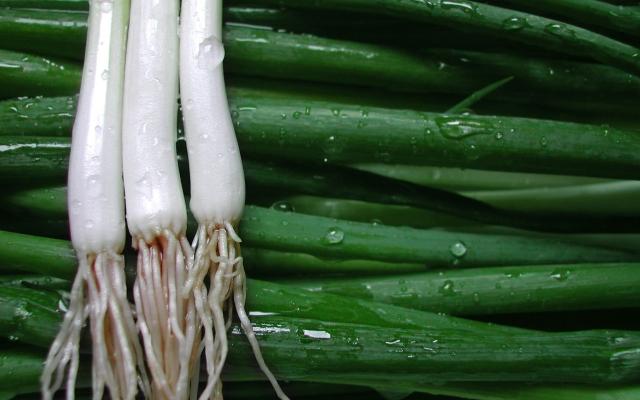 green-onion_1920x1200
