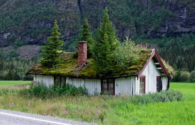 28 მწვანე სახურავი მდგრადი არქიტექტურის მოყვარულებისთვის