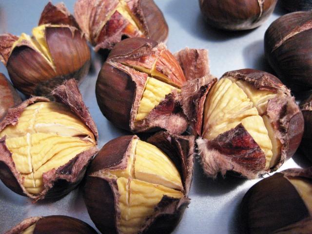 Chestnut_4