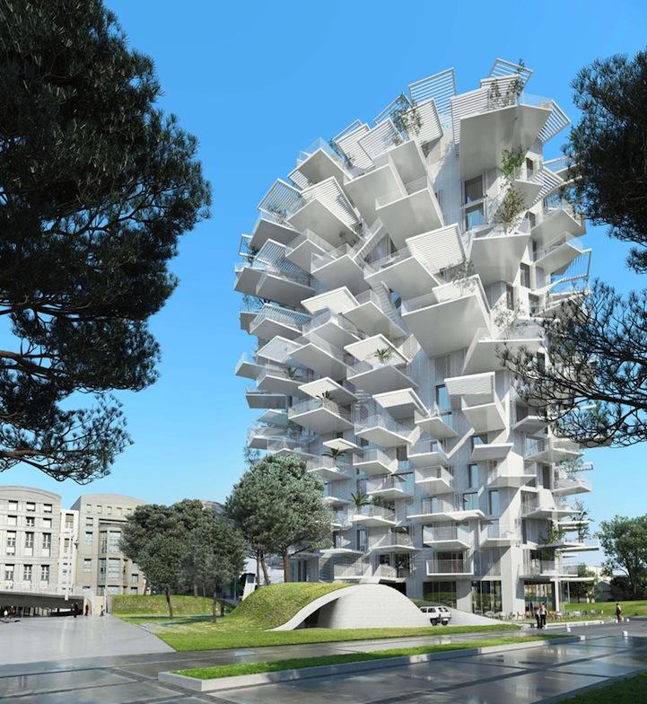 ცათამბჯენი ხე – როგორი უნდა იყოს 21 საუკუნის შენობა