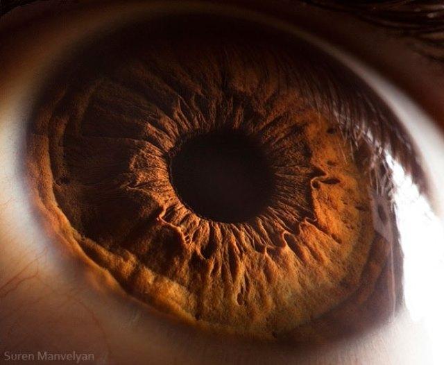 human-eye-macro-suren-manvelyan-10