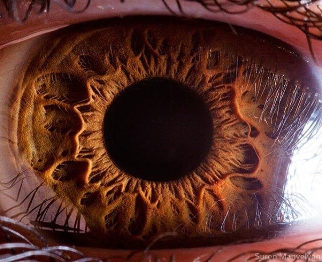 human-eye-macro-suren-manvelyan-14