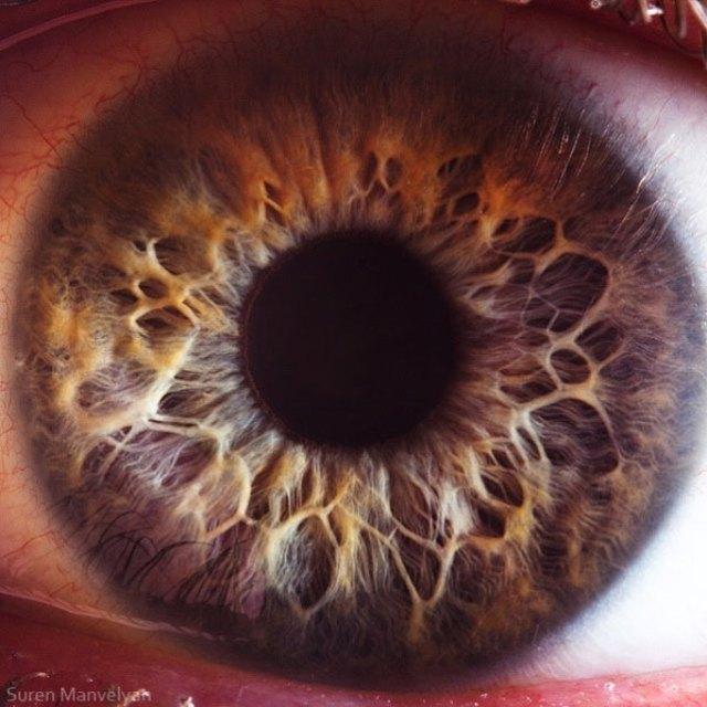 human-eye-macro-suren-manvelyan-16