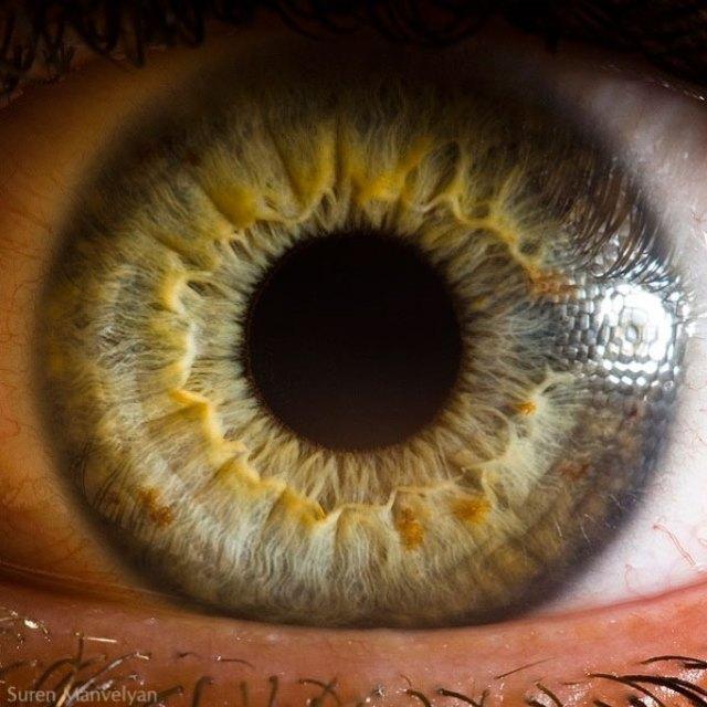 human-eye-macro-suren-manvelyan-2