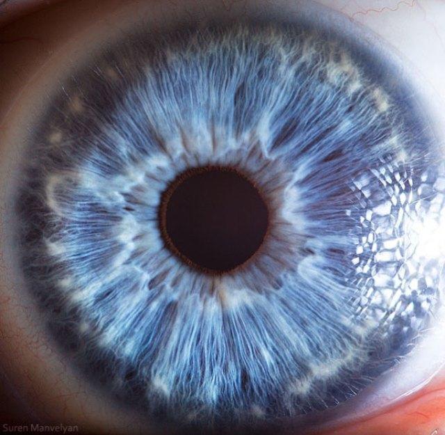 human-eye-macro-suren-manvelyan-20