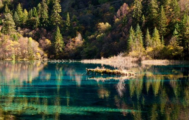 jiuzhaigou-national-park-lake-13