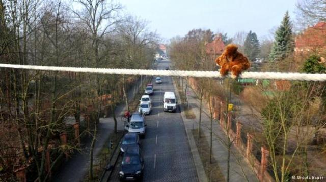 bridge-for-squirrel-1