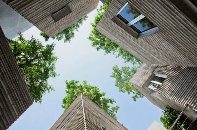სახლები ხეებისთვის – ვიეტნამელი არქიტექტორების კრეატიული ეკოპროექტი