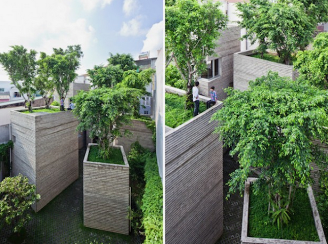 House-for-Trees-by-Vo-Trong-Nghia-Architects-88