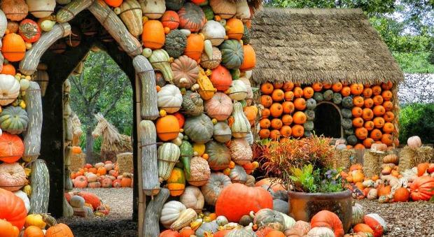 pumpkin-village-1