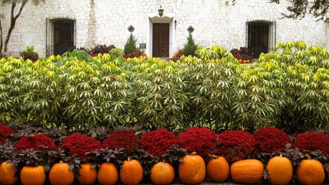 pumpkin-village-12