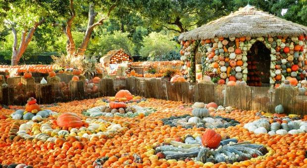 pumpkin-village-2