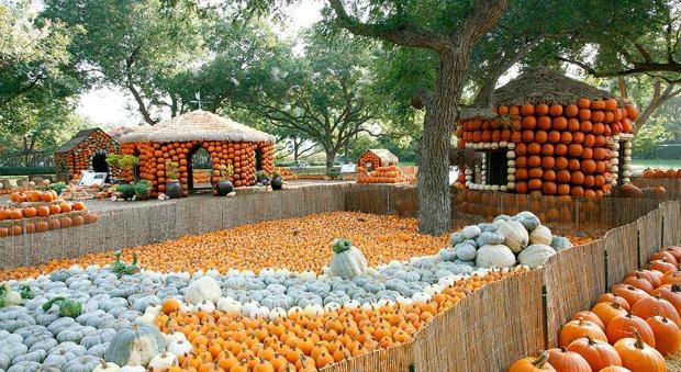 pumpkin-village-3