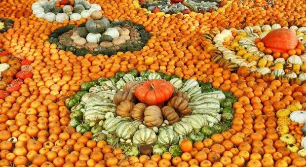 pumpkin-village-4