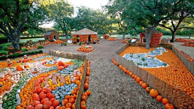 pumpkin-village-6