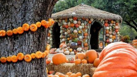 pumpkin-village-9