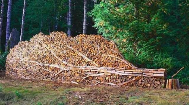 stacking-firewood-18