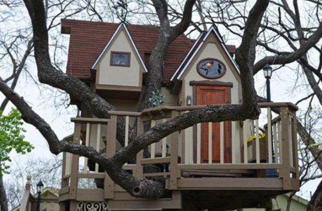 Fabulous-Tree-House-4
