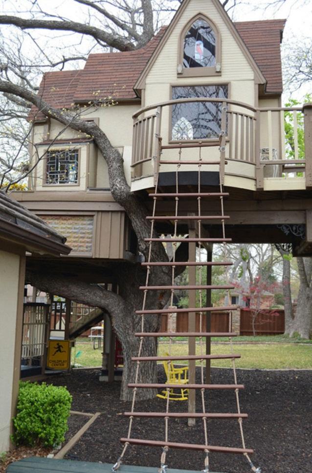 Fabulous-Tree-House-5